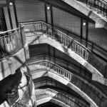 kelman plaza stair case wind photography