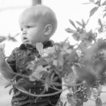 Child Photography in the leaves