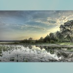 Real Estate and Landscapes Lake Jackson Shallows